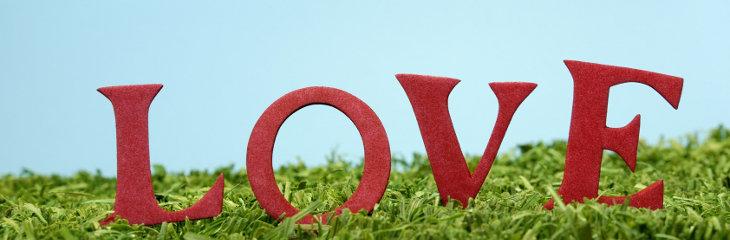 Quelle: Carmen Steiner - Fotolia.com