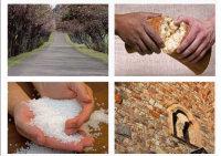 Bild: Postkarte mit den 4 Leitbildern Weg, Brot, Salz und Steine (Kirchenwand); Quelle: ekiba, ekiba